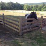 Slip Board for Horse Containment